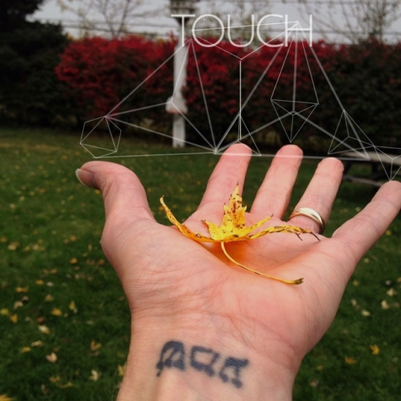 There are 48 nerve endings in each hand, 47 of which extend through the finger tips, and is processed also in the visual cortex. #touch is #healing and redirects our #focus. Touch someone, really #see; #notice the breeze, #sense a pet's texture, feel the warmth of another's hand.