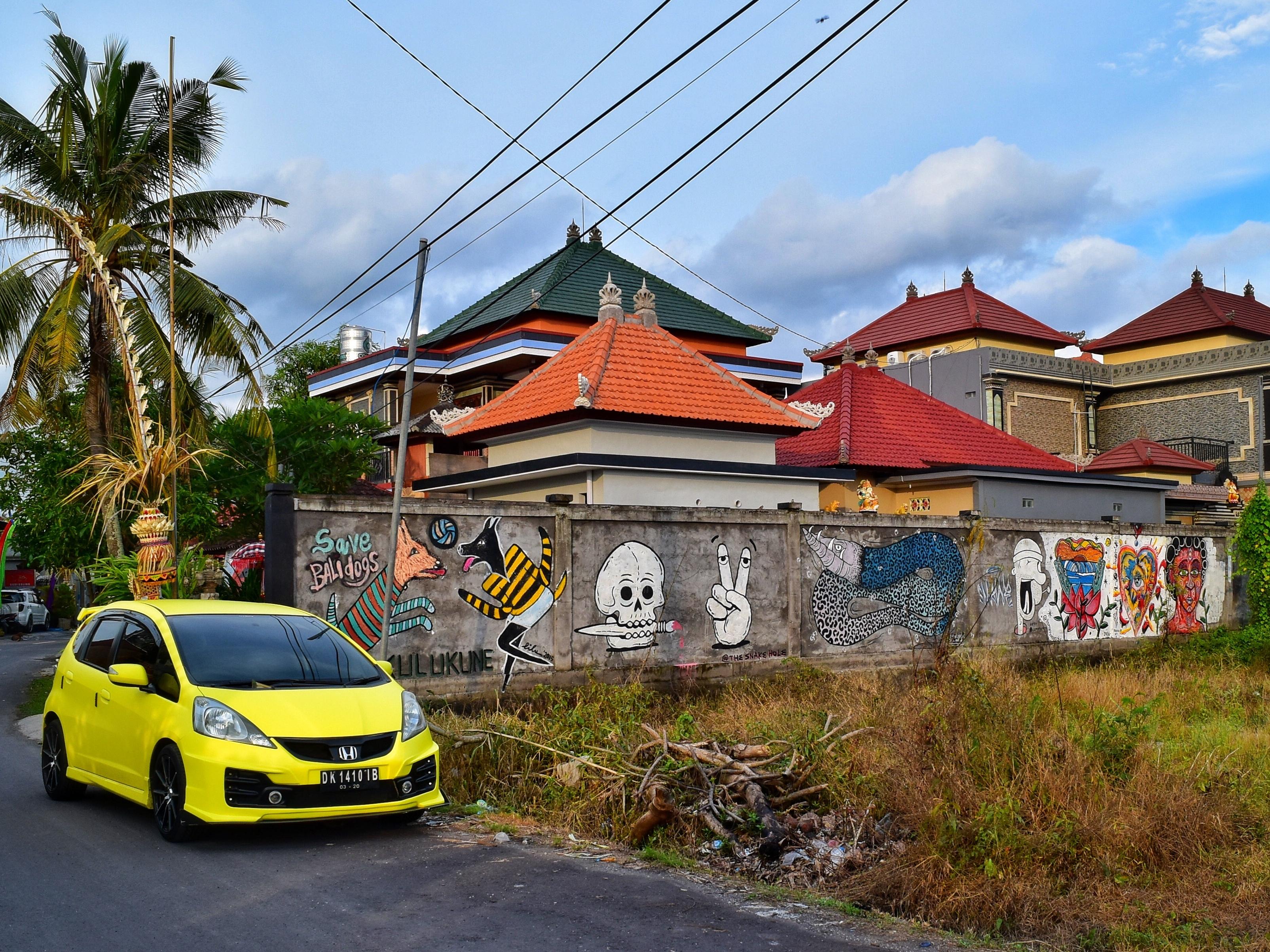 graffiti dogs n skull