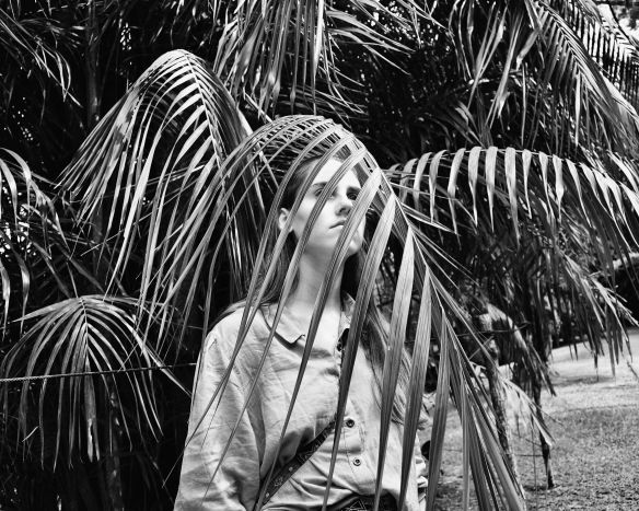 palm sam bw